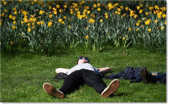 На даче не забудьте отдохнуть, а не только высадить картоху